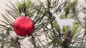 северный олень : Christmas winter scene of pine tree leaves and red xmas bauble ornament season background with snow fall.