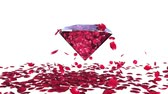 Diamond attracting rose petals, camera rotating, against white