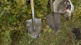 remove : Dirty gardening tools and shovels