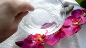 orquídea : Female hand preparing water for a Spa manicure, a glass bowl of water