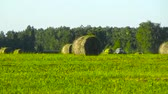 haymaking : Tractor and hay stacks