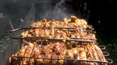 lamm : Pieces of chicken cooked on the grill