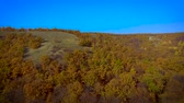 klipart : Panorama of autumn forest