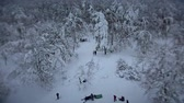 Winter fun in the snowy forest Stock Footage