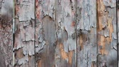 rachado : Background texture of wooden boards in motion on the right