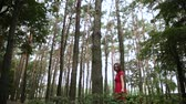 kelebekler : A very beautiful and fashionable woman in a red dress walks through the forest. Stok Video