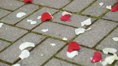 nostaljik : Flower petals on the floor at a wedding ceremony