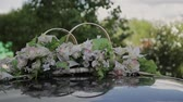 romantismo : Wedding decorations and scenery in view golden rings by car roof.