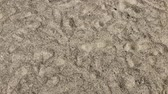 verão : Sand with footprints, clear sunny weather. Stock Footage