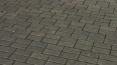 flagstone : Gray paving tiles on the street.
