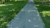 verão : Paving slabs in the city park. Stock Footage