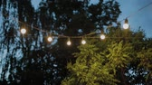 este : Electric garland with bulbs in the evening. Stock mozgókép
