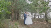 borboletas : Very beautiful bride and groom in the forest. Stock Footage