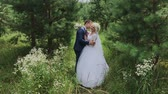 borboletas : Very beautiful bride and groom hold hands and hug in the forest. Stock Footage