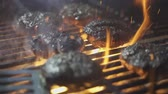 tűz : Grilled Burgers BBQ , slow motion