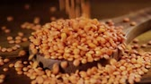 pişmemiş : Lentils red. The lentil (Lens culinaris or Lens esculenta) is an edible legume. It is a bushy plant known for its lens-shaped seeds.