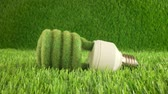 ответственность : Eco light bulb in green grass. Eco concept background Стоковые видеозаписи