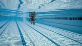 hattı : Woman swimming in the poolin the olympic Swimming pool view from under water Stok Video