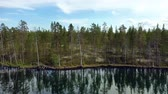 skandinávia : Aerial View of the Lake and Forest in Finland. Beautiful nature of Finland.