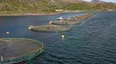 바닷물의 : Aerial footage Farm salmon fishing in Norway. Norway is the biggest producer of farmed salmon in the world, with more than one million tonnes produced each year. 무비클립