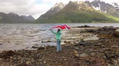 ulusal bayrağı : Woman with a waving flag of Norway on the background of nature Stok Video