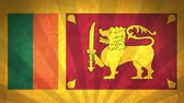 viñetas : Flag Of Sri Lanka. Paper Texture, With Seamlessly Spinning Printed Like Sunrays. High-Quality, Detailed Animation. 4K, 60fps Archivo de Video