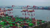 estaleiro : Odaiba, Japan - 19 February 2019 - Timelapse of seaport cranes and cargo ships work to load and unload ship containers at seaport terminal in Odaiba, Japan on February 19, 2019 Stock Footage