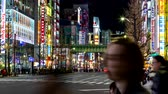videospiel : Tokyo, Japan - 23 February 2019 - Tokyos famous electronics shopping area, Akihabaras main street neon signs light up the night on February 23, 2019