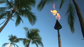 flare light : Tiki torch burning, Honolulu, Hawaii