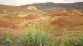 severozápad : John Day Fossil Beds National Monument, Painted Hills, Oregon, dolly shot