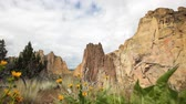 Уайлдфлауэр : Smith Rock state park, Oregon, dolly shot, wildflowers in foreground