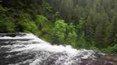 severozápad : View from the top of Upper North Falls, Silver Falls State Park, Oregon. Includes high quality audio. Dostupné videozáznamy