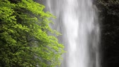 severozápad : Upper North Falls, Silver Falls State Park, Oregon, includes high quality audio.