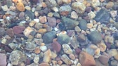 seixos : Close up of multi colored rocks in Jenny Lake, Grand Teton National Park