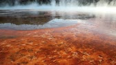 yellowstone : Bacteria mats around the Grand Prismatic spring, Yellowstone National Park, dolly shot Stock Footage