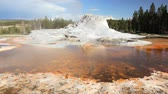 yellowstone : Dolly shot of Castle Geyser, Yellowstone National Park