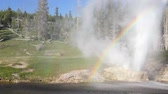 yellowstone : Rainbow forming from the eruption of Riverside Geyser along the Firehole River Stock Footage