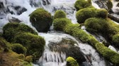 ormanlar : Water flowing over mossy rocks, Umpqua River, Oregon, high quality audio included