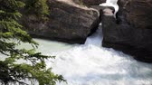 pontes : A natural bridge over rushing Kicking Horse river, Yoho National Park, Canada, with high quality audio included