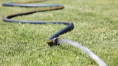 gramado : Watering the lawn with a garden hose Stock Footage