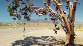 beira da estrada : Random tree covered in discarded shoes, near Doyle, California