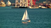 yat : Single sailboat in front of industrial area on Puget Sound