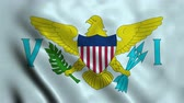 panna : 4K Seamless Loopable Flag of United States Virgin Islands Dostupné videozáznamy