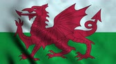 wales : 4K Seamless Loopable Flag of Wales Stock Footage