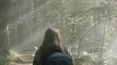 saco : Female photographer walking through the forest Stock Footage