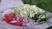 cucumber pieces : Freshly chopped summer salad. Many delicious vegetables in glass salad bowl - cucumber, lettuce, radish, tomatoes, red onion