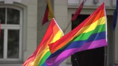 lesbian : Rainbow flag supporting LGBT community on gay parade event. Colourful flag in the crowd during gay pride celebration Stock Footage