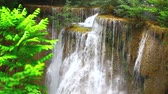 wild : HD: A beautiful waterfall in deep rain forest, 1920x1080