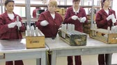 granada : Sopot, Bulgaria - May 17, 2016: Arsenal women workers are producing weapons detonators in one of Bulgarias arms factory. The facility produces and assembles rocket-propelled grenades (RPG), RPG-7 launchers, RPG war heads, detonators, land mines and other Stock Footage