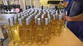 shipped : White wine bottles in a winery ordered for labeling before packed and shipped for sale. Human hand. Worker